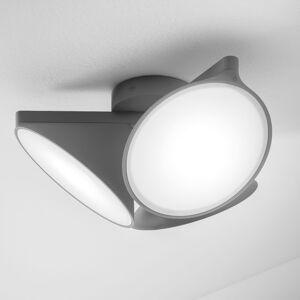 Axo Light PLORCHIDANXXLED Stropní svítidla