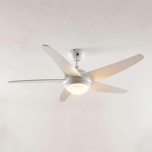 Lindby Ranja stropní ventilátor s R7s