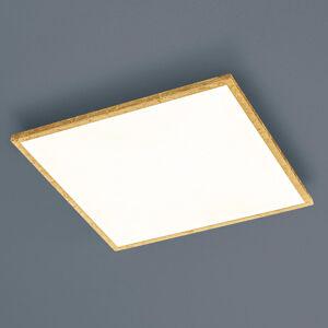 Helestra 15/1954.09 LED panely