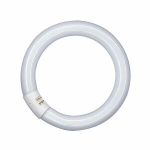 OSRAM l32w/840c Kruhové zářivky