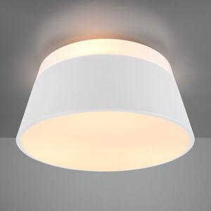 Trio Lighting 608900331 Stropní svítidla